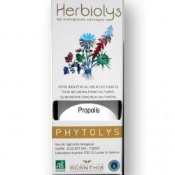 Propolis bio : protection de l'organism