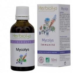 Mycolys : élixir de plantes bio anti-bactérien et anti-viral