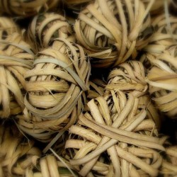 Huile Essentielle Katrafay Bio Madagascar : tonique et antalgique