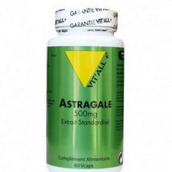 Astragale gélules de vital + : résistance