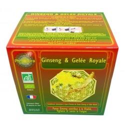 Ginseng et Gelée Royale en ampoule : Energie et Vitalité