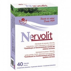 Nervolit : systéme nerveux
